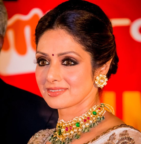 Sridevi in Embroidery Saree at SIIMA Awards 2014