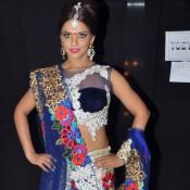 Neetu Chandra in Lehenga Choli at Bullion Summit Fashion Show 2014