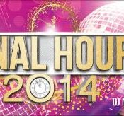 Final Hour 2014 New Year Party at Daulat Lawns in Pune on 31st December 2014