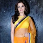 Monica Bedi in Yellow Transparent Saree Pics Hot Photos