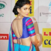 Pallavi Sharda in Backless Blouse Saree Photos