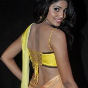 Pooja Sawant in Backless Blouse Photos – Hot Pics in Designer Backless Saree