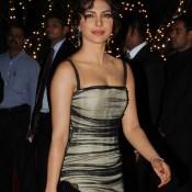 Priyanka Chopra in One Piece Dresses – Glamour Photos