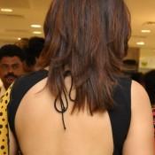 Richa Gangopdhyaya in Backless Saree Images