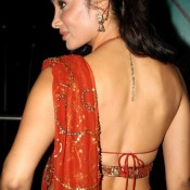 Sofia Hayat in Backless Blouse Photos – Hot Pics in Designer Backless Saree