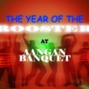 The Year of The Rooster 31 December 2014 Party in Aangan Banquet at Ahmedabad