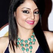 Gunjan Vijaya at 7th Boroplus Zee Gold Awards 2014