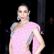 Malaika Arora Khan in Pink Saree at Shirin Morani and Udhay Singh Wedding Reception