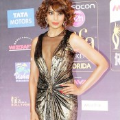 Bipasha Basu Hot in See through Front Open Evening Gown at IIFA Awards 2014