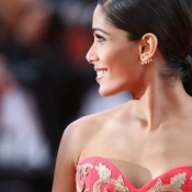 Freida Pinto in Pink Gown at Cannes Film Festival 2014
