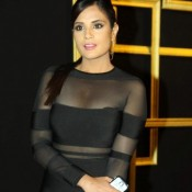 Richa Chadda in See Through Black Dress at Deepika Padukone hosed Black and Gold theme Success Party