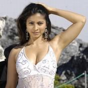 Tanisha Mukherjee Hot Deep Cleavage and Armpit Show Pics Bold Images