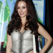 Evelyn Sharma Hot in White Saree with Silver Strapless Blouse at Charity Fashion Show 2014