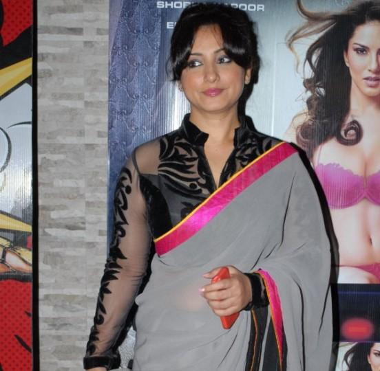 Divya Dutt in Gray Black Saree with Black Transparent Net Blouse at Main Tera Hero Success Bash