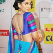 Pallavi Sharda in Saree Photos at Zee Cine Awards 2014