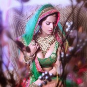 Poonam Pandey Hot in Saree – Cool Photos