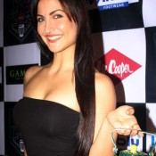 Elli Avram Hot Cleavage Photos at Cutting Chai Festival – Hot Photos