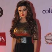Rakhi Sawant at Television Style Awards 2015 Photos