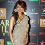 Bipasha Basu in Saree – Hot Pics in Light Grey and Brown Combination Saree at Star Guide Awards 2014