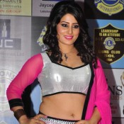 Arjumman Mughal at 20th Lions Gold Awards 2014 Pics