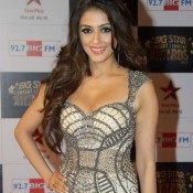 Aarti Chabria Hot in Skirt at Big Star Entertainment Awards 2013