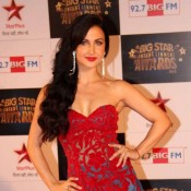 Elli Avram in Big Star Entertainment Awards 2013