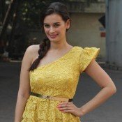 Evelyn Sharma in Short Yellow One Piece Dress at Nyuzmakers Cricket Challenge 2014 Press Meet