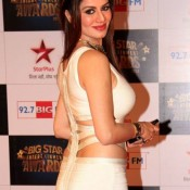 Kainaat Arora Hot Navel Images Pics at Big Star Entertainment Awards 2013
