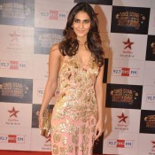 Vaani Kapoor in Pink Evening Gown at Big Star Entertainment Awards 2013 Photos