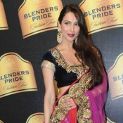 Navy Blue Velvet Saree Blouse Designs Cool Patterns of Malaika Arora Khan at Blenders Pride Fashion Tour 2013 Day 02