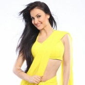 Elli Avram in Yellow Saree Hot Navel Show Photos
