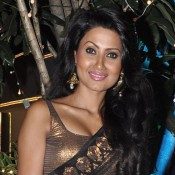 Nigaar Khan in Black Transparent Saree at Sachin and Raina Joshi's Diwali Bash 2013