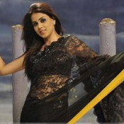 Genelia D'Souza Hot Navel in SAREE – Navel Show Pics New Images