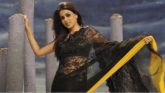 Genelia D'Souza Hot Navel in SAREE – Navel Show Pics New Images