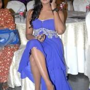 Karthika Nair Hot Legs – Karthika Nair Hot Things Pics