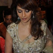 Madhuri Dixit in Cream Transparent Saree Photos