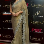 Mona Singh in Golden Saree at SAIFTA 2013