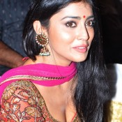 Shriya Saran Hot Photos in Deep Cleavage