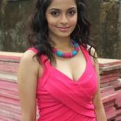 Shweta Bhardwaj Hot Photos in Raqt Ek Rishta 2013 Movie
